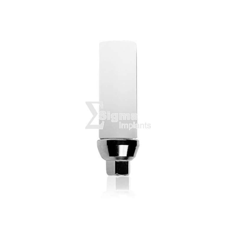 Plastic Abutment With Titanium Basis For Internal Hex